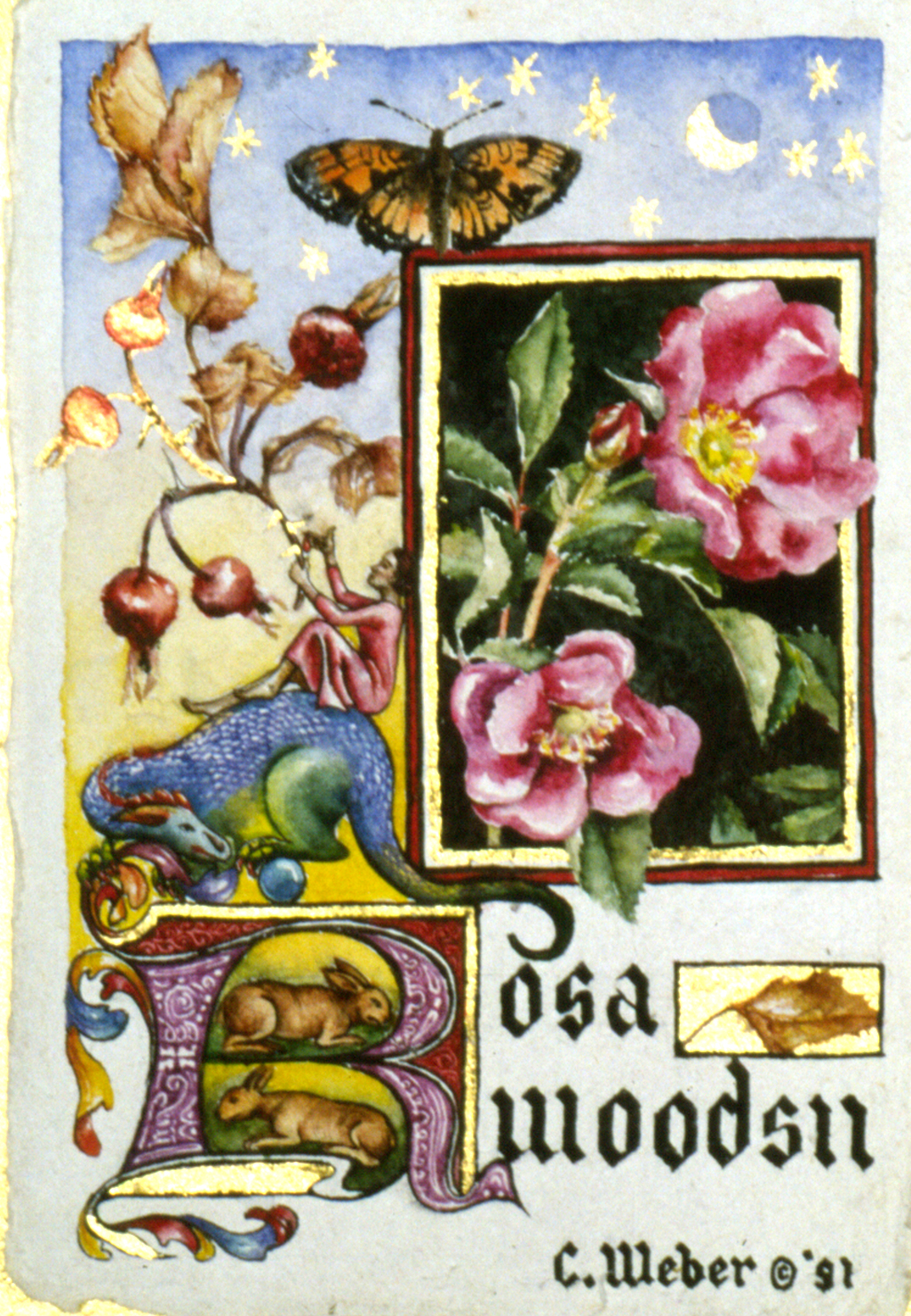 cathy weber - art - illumination - calligraphy - manuscript - watercolor - woman - rose - montana