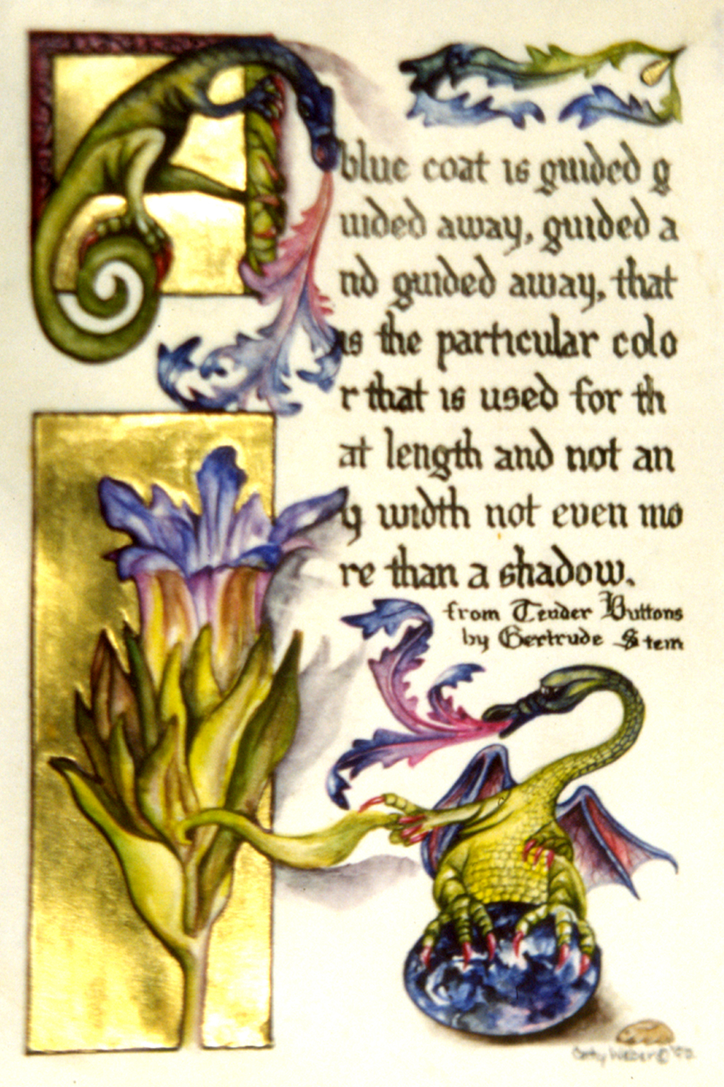 cathy weber - art - illumination - calligraphy - manuscript - watercolor - woman - rose - montana - gertrude stein - tender buttons