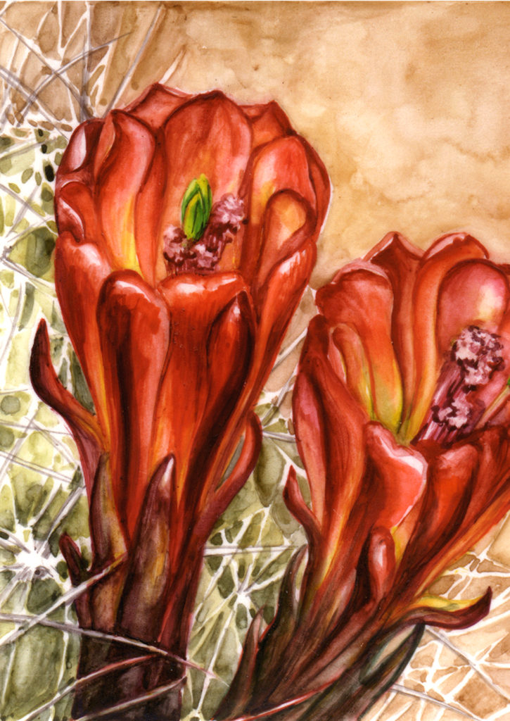 cathy - weber - artmaker - art - woman - oil - montana - painting - oil -poem - object - card - notecard - claret - cactus