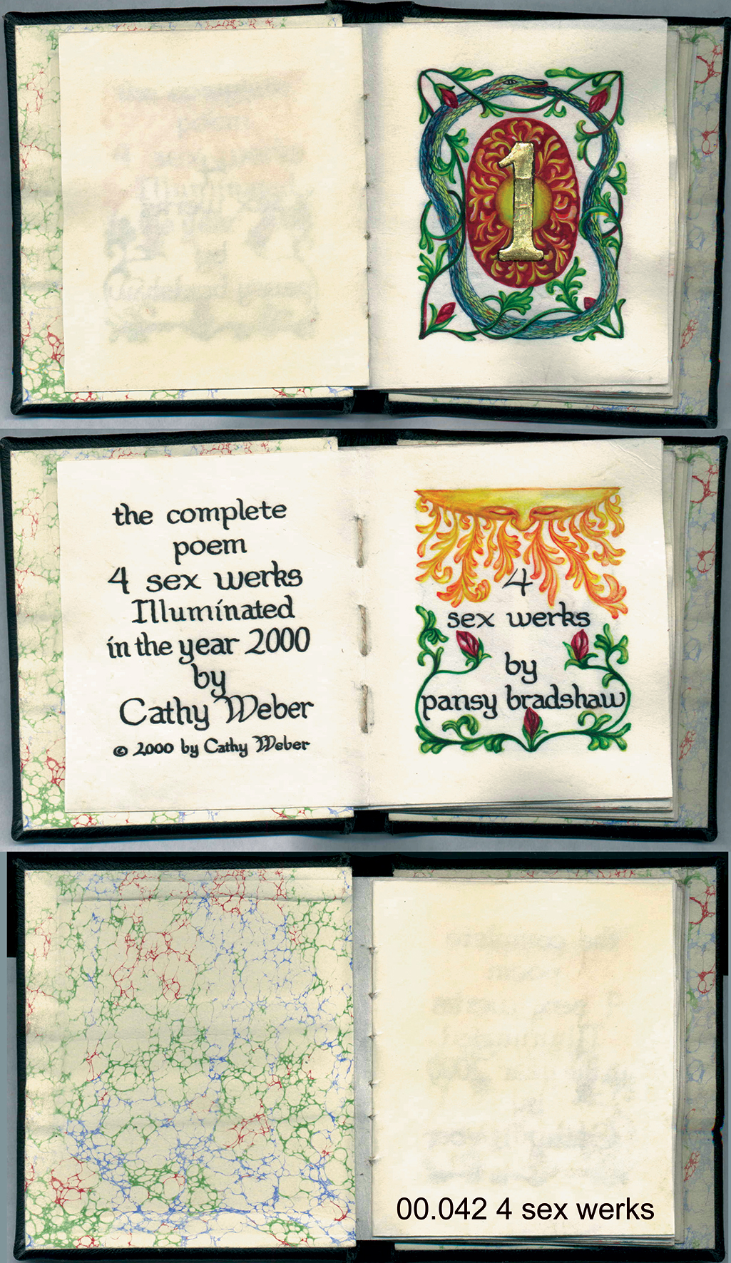 athy weber - art - painting - woman - book art - artist book - book - montana - watercolor - skin - pansy bradshaw - poetry - sex