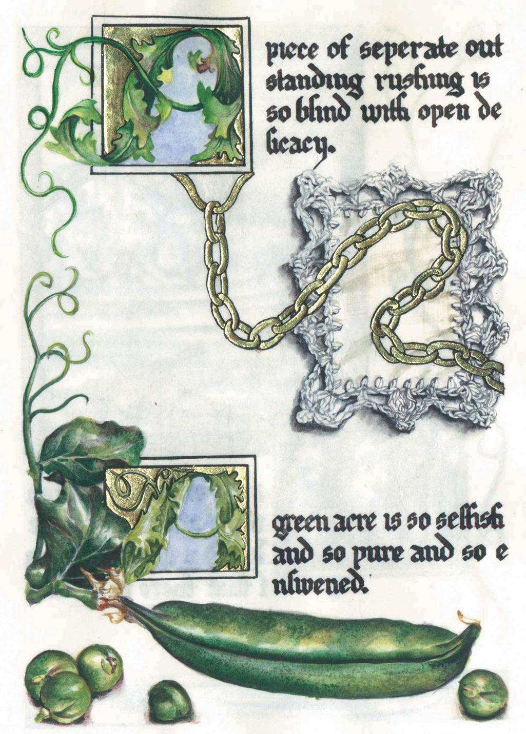cathy weber - art - artmaker - watercolor - parchment- montana - Gertrude - stein - tender buttons - illumination - book - artist