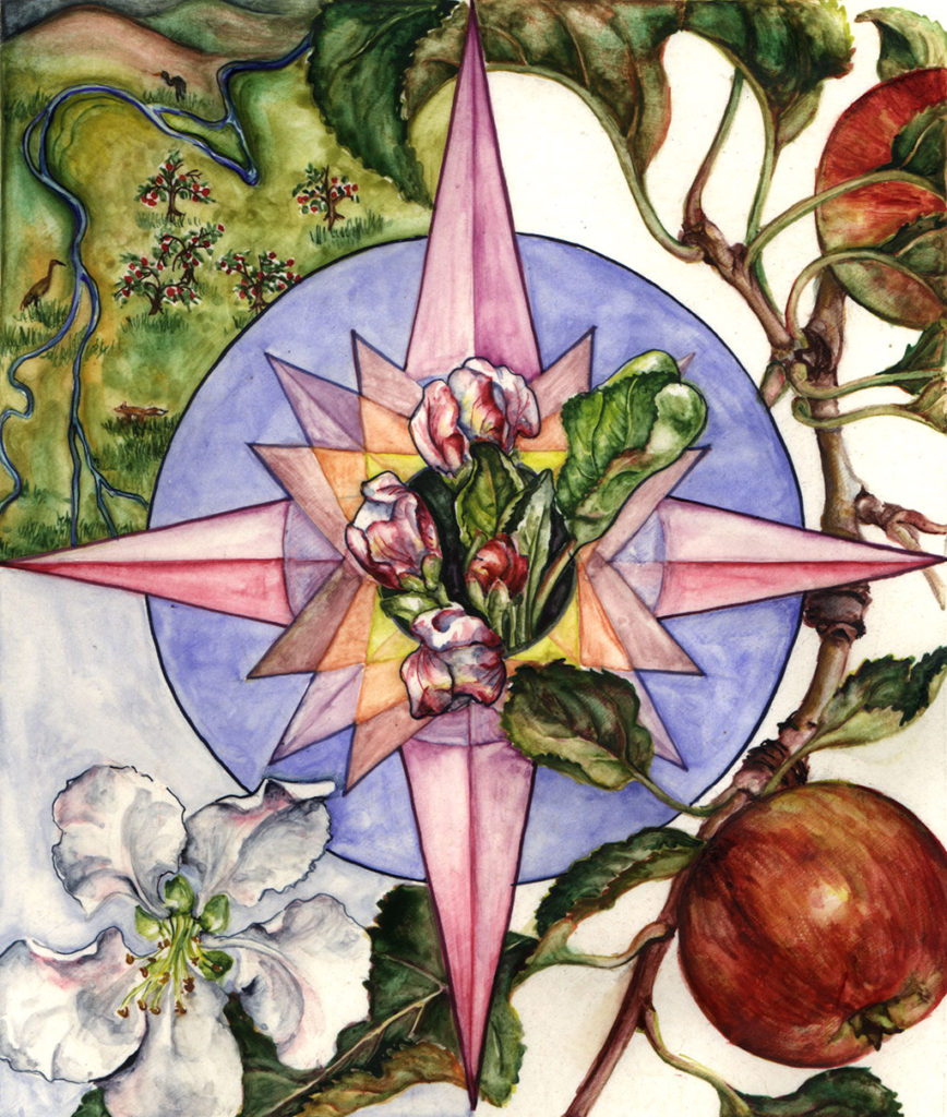 cathy weber - art - artmaker - watercolor - montana - illumination - book - artist - map - compass rose - parchment